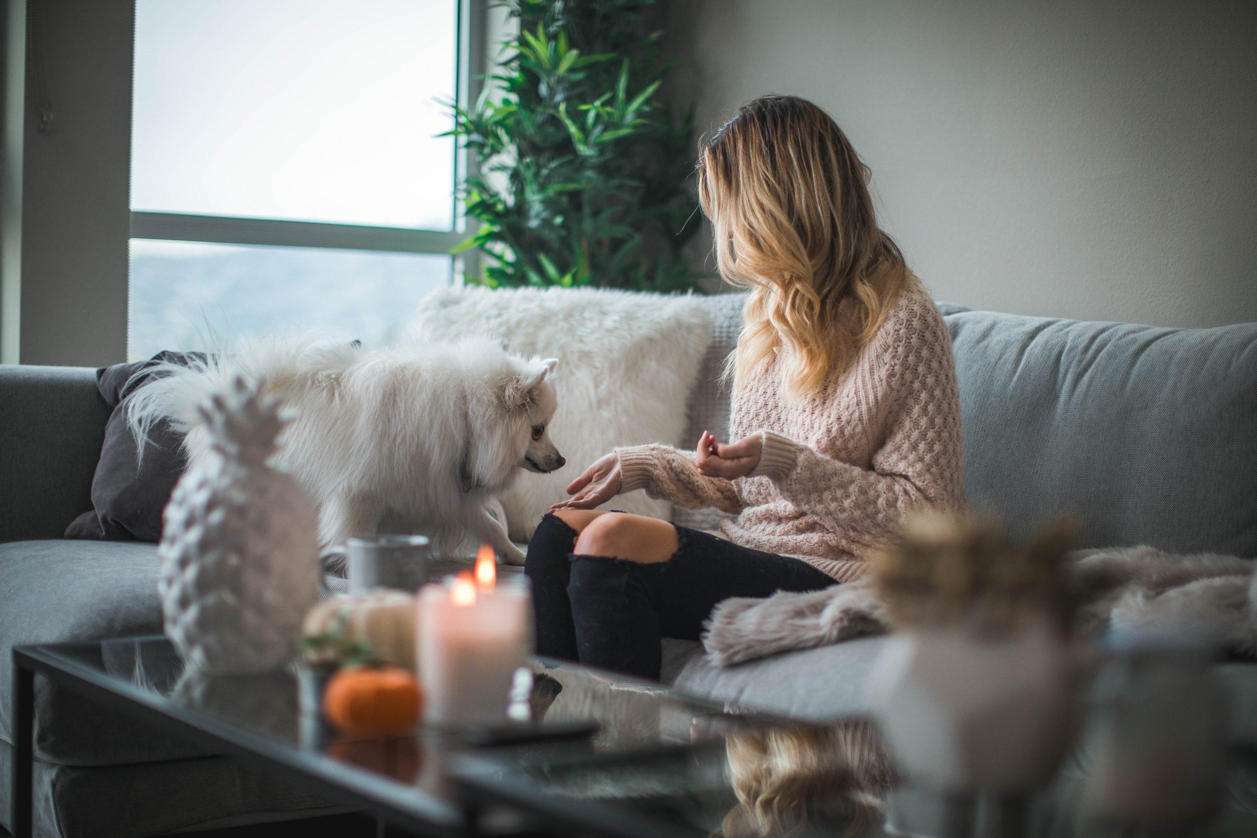 hypotheekadvies huis kopen